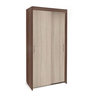 Картинка Шкаф-купе Камелия 2-х дверный Ясень Темный Светлый дизайн-2 ракурс-1